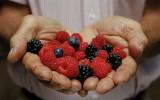Berries6.jpg