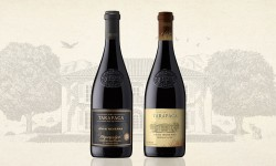 Enólogo de Viña Tarapacá recomienda dos vinos tintos para los buenos momentos