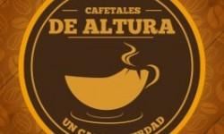 Cafetales de Altura