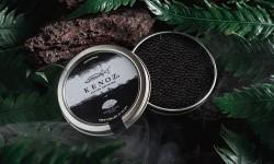 """Mandarin Oriental, Santiago y la prestigiosa marca de caviar Kenoz se unen para crear """"Kenoz for Mo"""""""