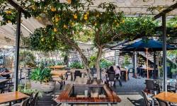 Jardín de sabores napolitanos