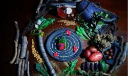 Cocina y chocolatería silvestre