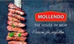 Consumo de Carne en Chile Mollendo