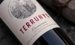 Terrunyo Carmenere celebra sus 20 años con vino de edición especial