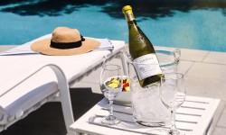 ¡Disfruta tu verano con la frescura de un Sauvignon Blanc!