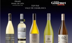 Primer Panel De Cata Sauvignon Blanc 2020
