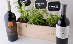Viña Aresti presenta sus primeros 7 vinos veganos