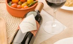 Viña Terramater estrena nueva imagen de su línea Vineyard Reserve con destacados puntajes de James Suckling
