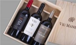 Viu Manent celebra el mes del Malbec con entretenidas actividades para los amantes del vino