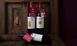 Viu Manent y el reconocido sommelier Ricardo Grellet enseñan a catar vinos en nueva campaña digital
