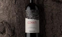 Coyam de Emiliana entre los 10 mejores vinos orgánicos del mundo
