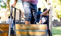 Feria Veramonte 2019