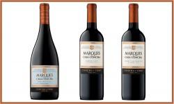Descubre los sabores de Chile junto al Carmenere, Pinot Noir y Cabernet Sauvignon