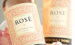 Rose Concha y Toro