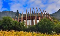Mercado de vinos de lujo en Chile