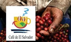 CAFÉ DE EL SALVADOR